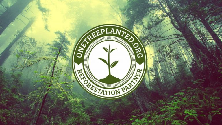 solocube-becomes-reforestation-partner-with-one-tree-planted-1280x720-1